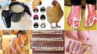 Kumpulan Benda Aneh yang Dijual di Toko Online AS