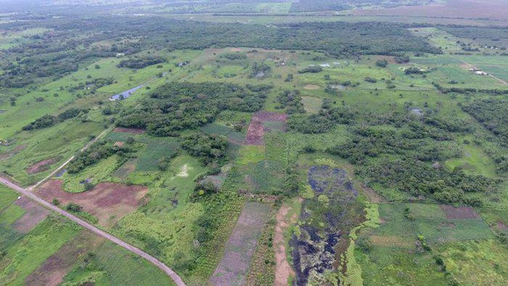 Monumen Tertua dan Terbesar Peninggalan Suku Maya Ditemukan