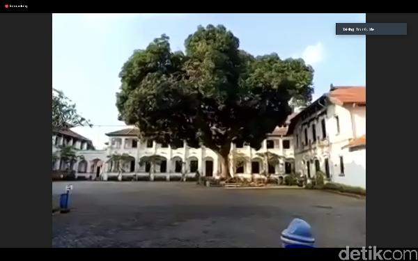 Di dekat toilet, di halaman tengah ada pohon mangga berumur 102 tahun, namanya lali jiwo. Pohon ini masih produktif atau berbuah hingga kini.