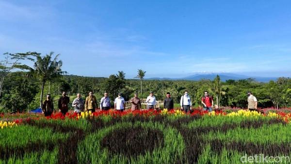Agrowisata Tamansuruh berada di Desa Tamansuruh, Kecamatan Glagah, Banyuwangi. Di destinasi cantik ini, ada hamparan bunga-bunga cantik warna warni yang menjadi spot Instagramable. (Ardian Fanani/detikcom)