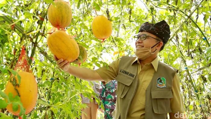 Agro Wisata Tamansuruh