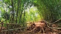 Trek sepeda gunung sepanjang 4 kilometer pun dibangun Dinas Pekerjaan Umum (PU) Kota Bandung melintasi dua bukit sekaligus yaitu Bukit Mbah Garut dan Bukit Mbah Celeng. Nantinya tempat itu akan dijadikan obyek wisata baru yang berdiri di atas tanah milik Pemkot Bandung.
