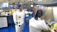 Bos Lab Wuhan Klaim Varian Baru Corona Akan Terus Muncul