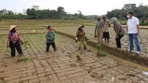 Gelontorkan Rp 1 Miliar Lebih untuk UMKM di Lampung