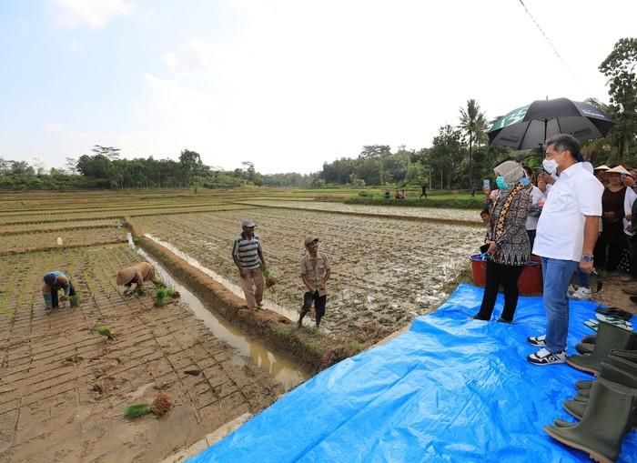 Bank BRI kembali mengucurkan bantuan melalui Yayasan Baitul Mal (YBM) Bank BRIsenilai Rp 1,6 Miliar untuk 31 kelompok tani peserta program Peningkatan Keterampilan Usaha Rakyat (PKUR) di Lampung.