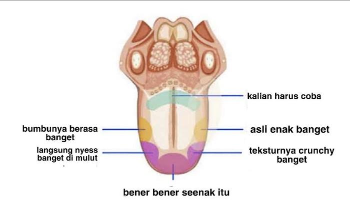 Peta rasa lidah selebram saat mengulas makanan