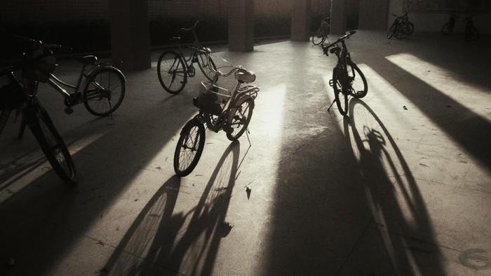 Ilustrasi sepeda.