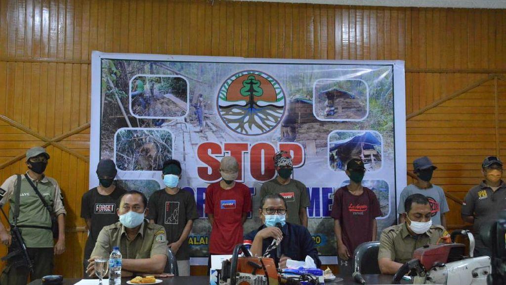 BBKSDA Riau Temukan Illegal Logging di Kampar, 6 Pondok Pelaku Dibakar