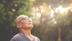 Manfaat Sinar Matahari untuk Kesehatan, Sumber Vitamin D Tubuh