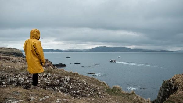 Para peneliti memeriksa 1.597 sarang burung di pulau-pulau tak berpenghuni di pesisir pantai kawasan Ayrshire. Hasilnya, lebih dari 80% sarang burung itu ditemukan sampah plastik. (Getty Images/Erik_V)