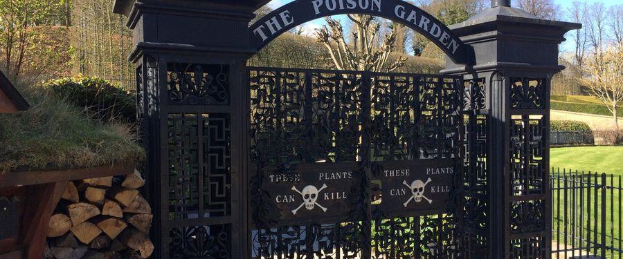 Taman Bunga Yang Mematikan Di Kastil Harry Potter