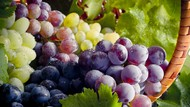 Diklaim Bisa Cegah COVID-19, Rutinlah Konsumsi Makanan Kaya Vitamin K Ini