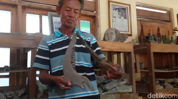 Sudarsono mengoleksi ribuan fosil di rumahnya di Sragen, Selasa (16/6/2020).