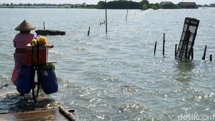 Banjir rob merendam Desa Bedono di kawasan Kabupaten Demak. Banjir itu diketahui telah merendam kawasan tersebut sejak tiga bulan terakhir.