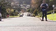 Ada Jalan Tol Horor di Selandia Baru, Mitosnya Gara-gara Turis
