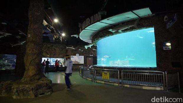sea world ancol new normal
