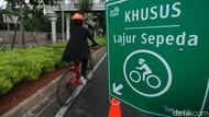 Pemprov DKI Bikin Panduan Pesepeda, Keluar Jalur Bisa Dikurung 15 Hari