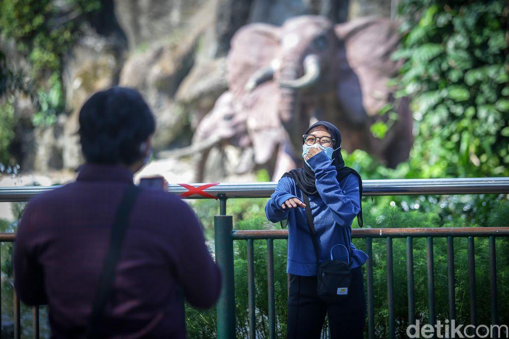 Taman Margsatwa Ragunan (TMR) kembali dibuka di masa PSBB transisi. Meski tidak seramai sebelum pandemi Corona, warga mulai berdatangan ke lokasi.