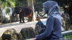 Jakarta Ultah ke-493, Ini 5 Destinasi Wisata yang Buka