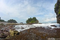 Saat surut, traveler bisa melihat rumput laut dan biota-biota lainnya, seperti kepiting dan kelomang. (Faizal Amiruddin/detikcom)