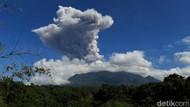 Merapi Erupsi 2 Kali Sehari, BPPTKG Ingatkan Potensi Luncuran Awan Panas