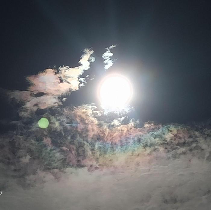 Pengamatan gerhana matahari di Palopo Sulsel. (M Riyas/detikcom)