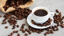 Tahukah kamu tak penting jenis dan rasa kopi yang kamu sukai karena konon katanya kopi bermanfaat untuk meningkatkan kecerdasan otak. Benarkah demikian?
