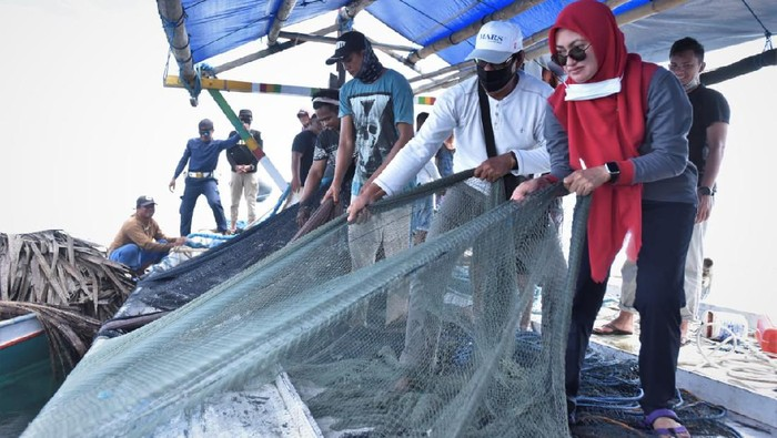 Tarik Jaring Lingkar, Bupati Luwu Utara Jaring Ikan 150 Kg di Perairan Teluk Bone