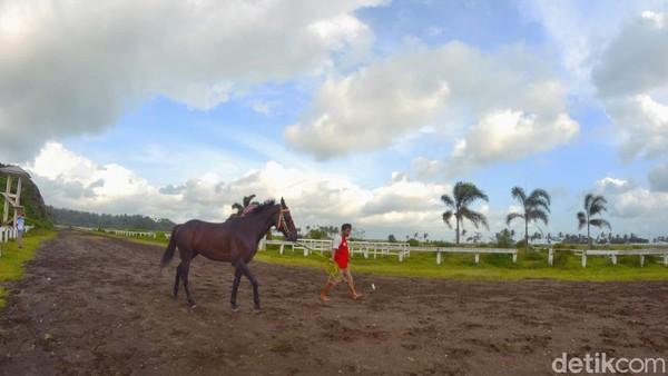Keberadaan arena pacuan kuda Legok Jawa memiliki daya tarik wisata. Arena kuda pacu tersebut saling melengkapi dengan Pantai Madasari yang indah. (Faizal Amiruddin/detikcom)