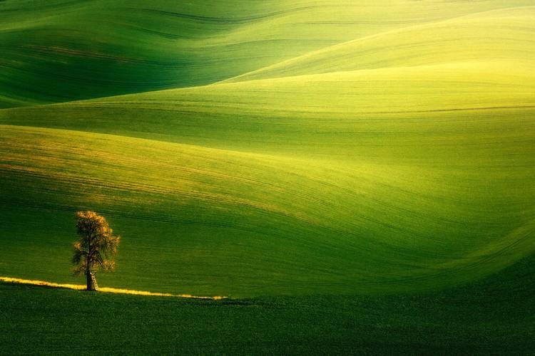 jawara world landscape photographer