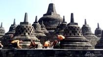 Petugas Bersihkan Abu Merapi dari Candi Borobudur
