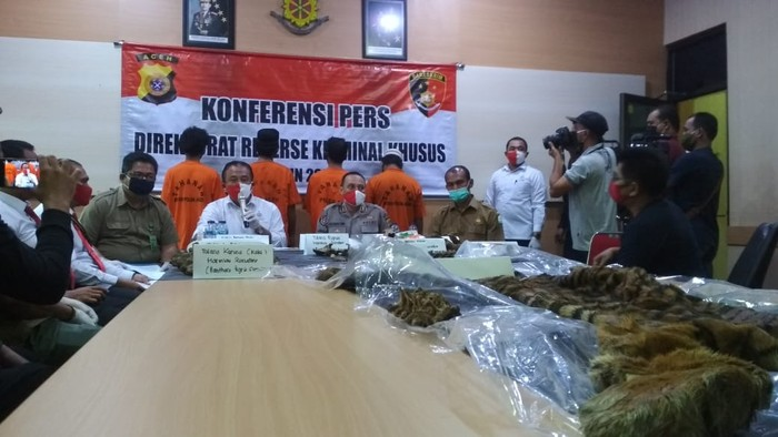 Polisi tangkap 4 orang diduga penjual kulit harimau di Aceh (Agus Setyadi-detikcom)