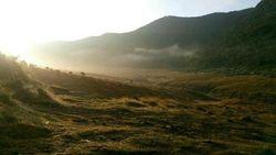 Terlalu, Pendaki Bugil Pose di Kawasan Paling Sakral Gunung Gede Pangrango
