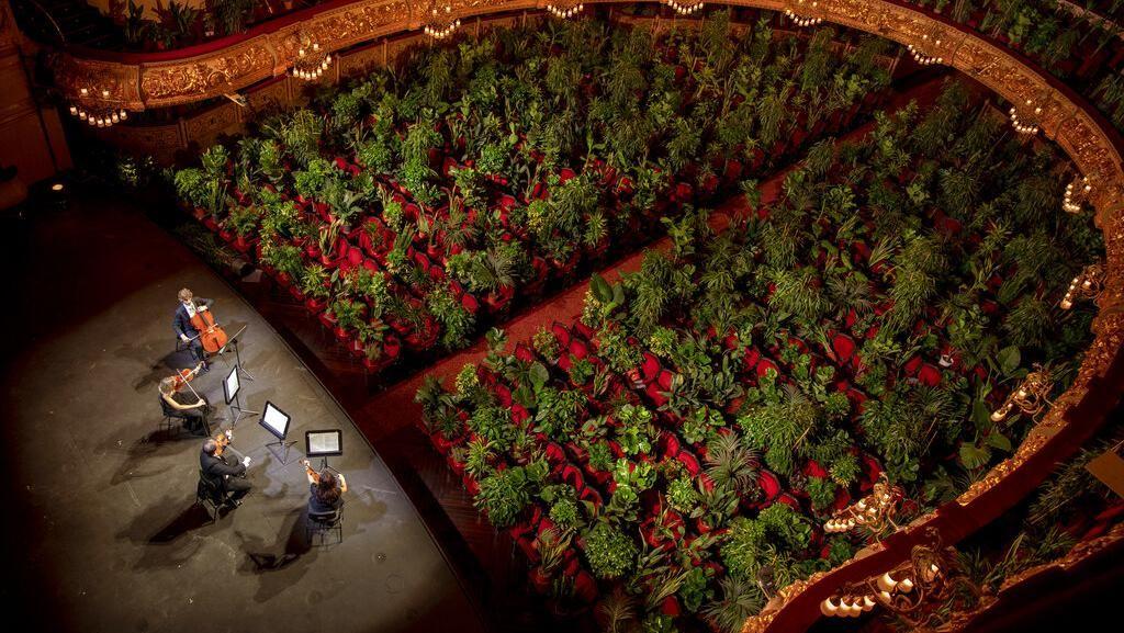 Tanaman Hingga Manekin Gantikan Penonton Teater di Spanyol