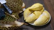 Unik! Minuman Probiotik Terbaru Berbahan Bir dan Durian