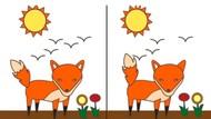 Tes Psikologi: Perbedaan Apa yang Pertama Kamu Temukan di Gambar?