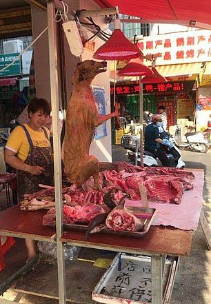 festival daging anjing china
