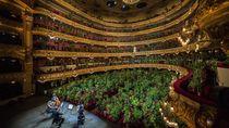 Potret Opera Musik yang Dihadiri 2.292 Pot Tanaman