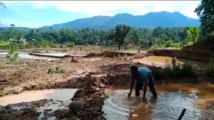 Banjir di Bengku Tengah (dok. Istimewa)