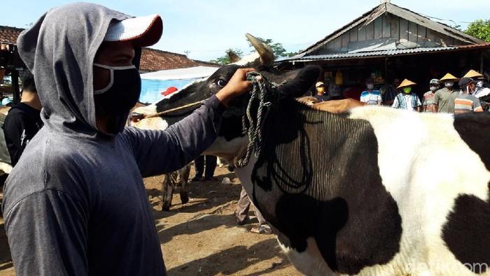 Para pedagang di pasar hewan Sunggingan, Boyolali, tampak beraktivitas dengan kenakan masker. Hal itu merupakan salah satu upaya penerapan protokol kesehatan.