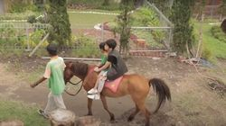 Agrowisata Bhumi Merapi, Destinasi Ramah Anak di Sleman