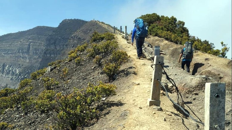 Jalur ke Gunung Pangrango