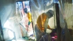 Kongo Deklarasikan Bebas dari Ebola
