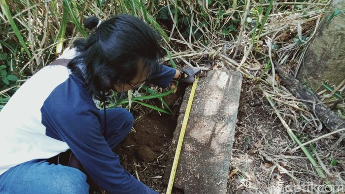 Warga Desa Mranggen, Kecamatan Jatinom, Klaten menemukan ratusan batu diduga reruntuhan candi dan arca Nandi.