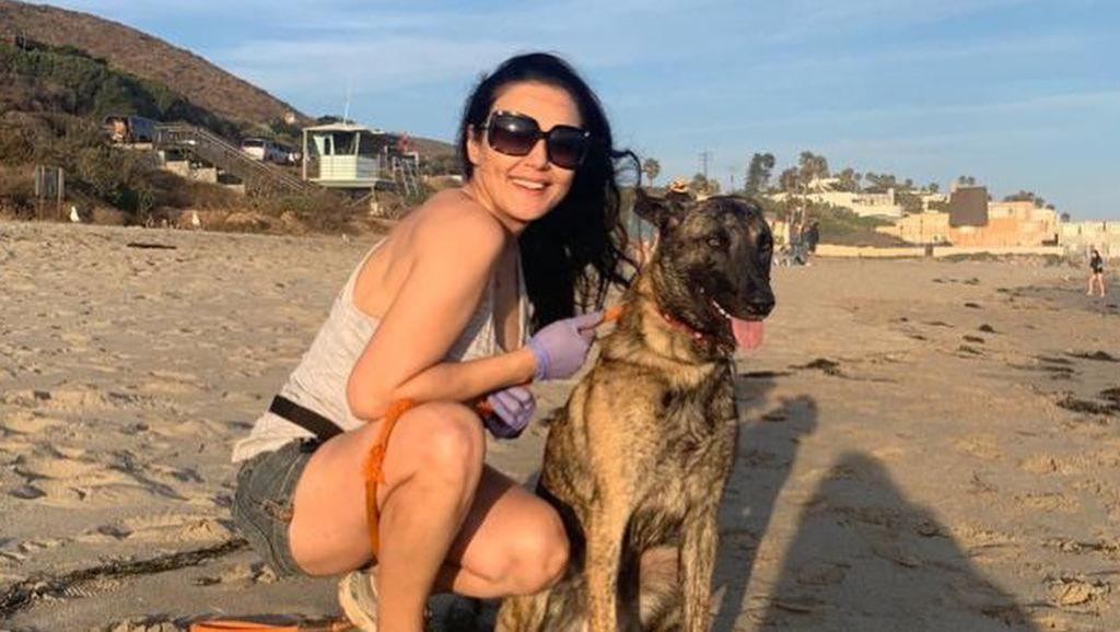 Preity Zinta Tampil Seksi di Pantai Setelah 104 Hari Jalani Karantina