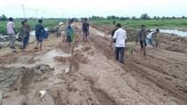 Parahnya Kerusakan Jalan di Riau, Hingga Ditanami Pisang dan Sawit
