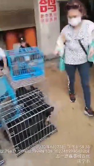 Daging Anjing di China