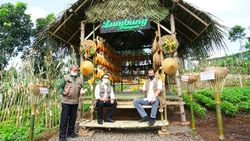 Doni Monardo Apresiasi Banyuwangi Sertifikasi Protokol Kesehatan di Sektor Pariwisata