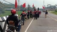 Respons Pembakaran Bendera, PDIP Brebes Merahkan 17 Kecamatan