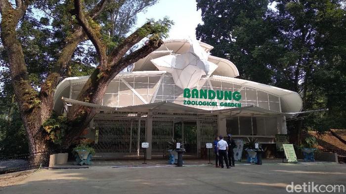 Kebun Binatang Bandung dibuka